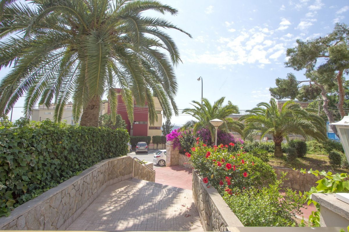 Planta baja-Venta-Palma de Mallorca-210488-Foto-6