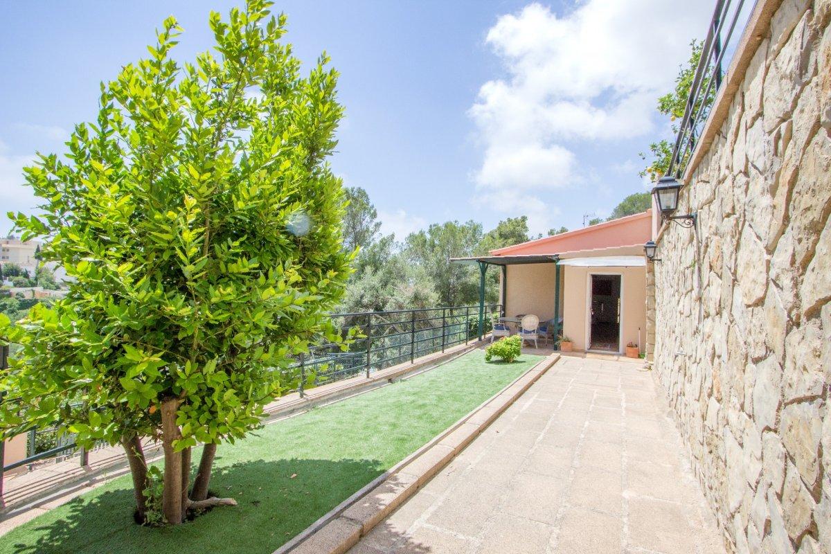Chalet-Venta-Palma de Mallorca-210605-Foto-5