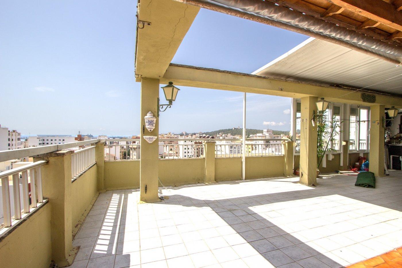 Ático-Venta-Palma de Mallorca-211014-Foto-6