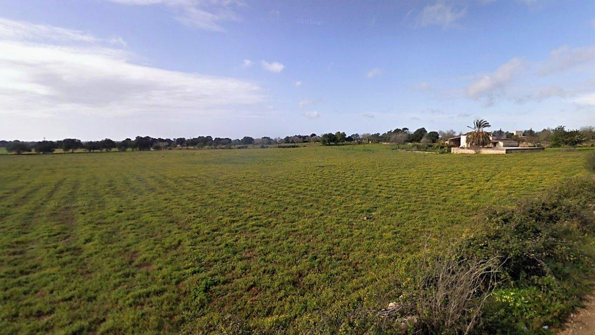 terreno-urbanizable en llucmajor · llucmajor-rural 2000000€