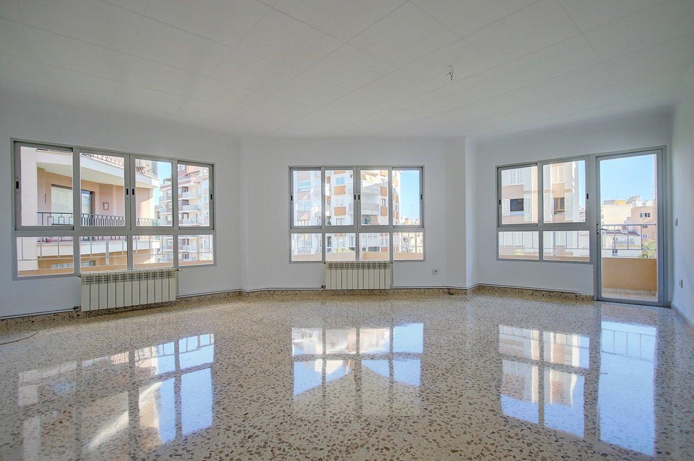 piso en palma-de-mallorca · pere-garau 975€