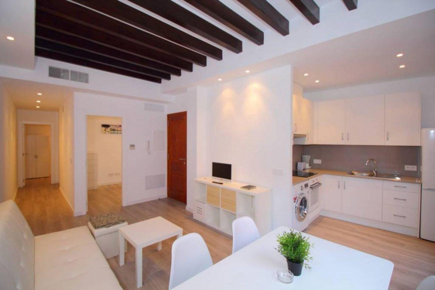 piso en palma-de-mallorca · centro 825€
