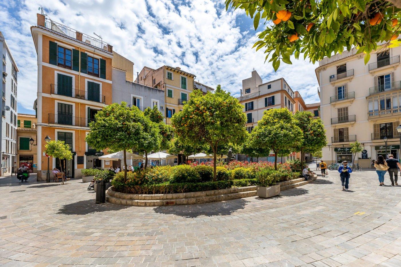 Ático con terraza en plaza mayor de palma - imagenInmueble13