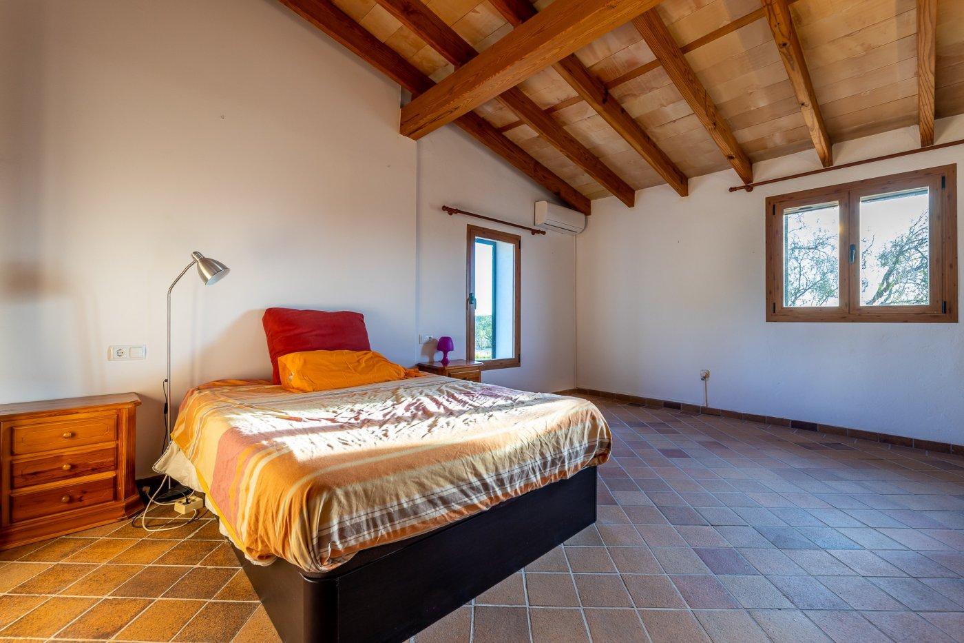 Encantadora finca rÚstica con casa de invitados  en marratxinet - imagenInmueble18