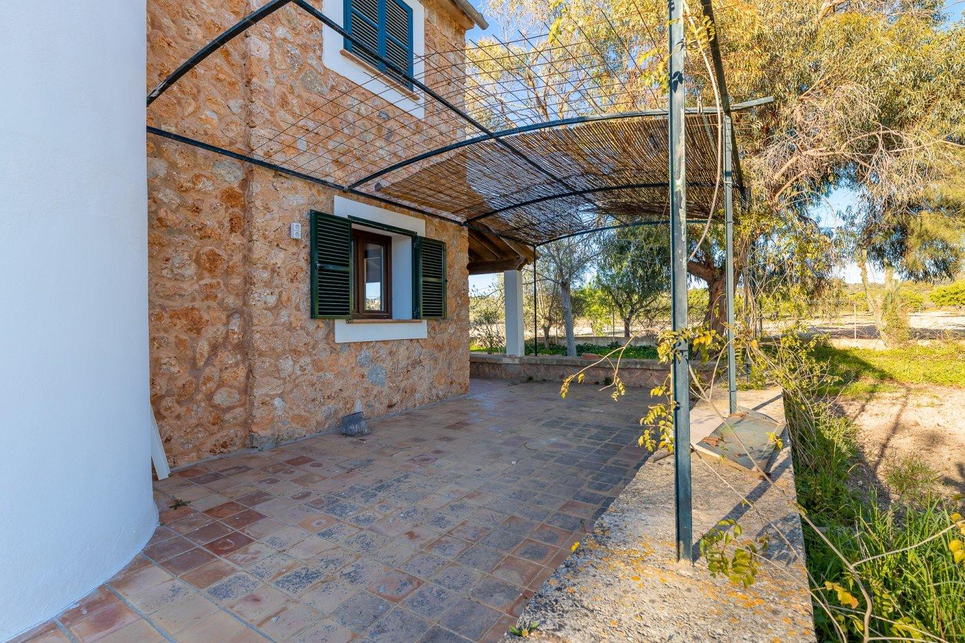 Encantadora finca rÚstica con casa de invitados  en marratxinet - imagenInmueble33