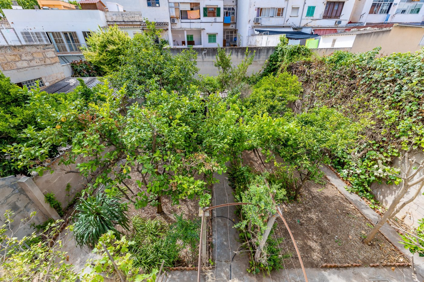 Casa con jardin en els hostalets, palma - imagenInmueble34