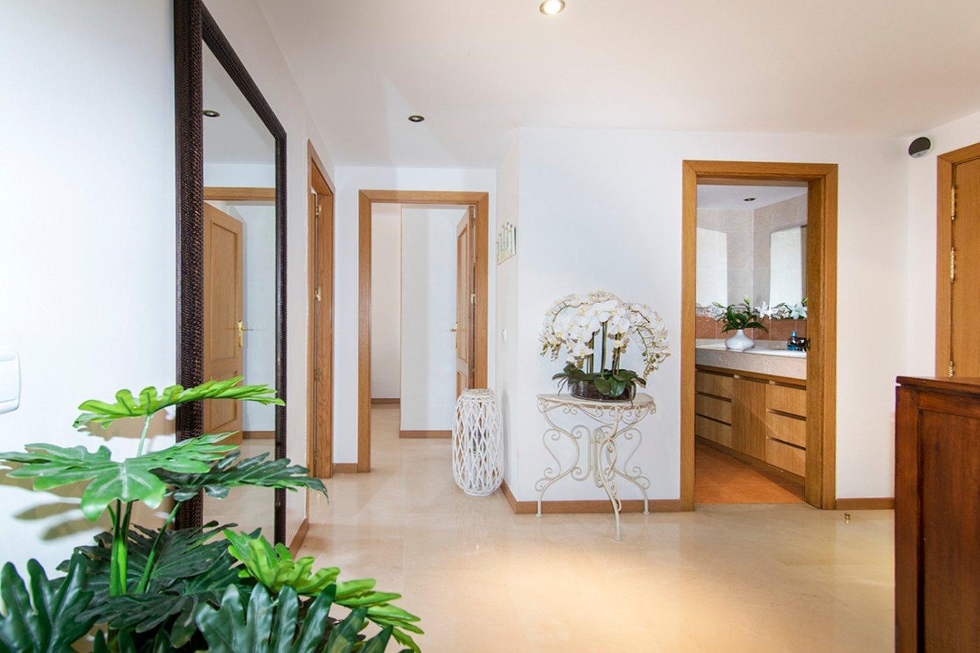 Planta baja de 2 habitaciones, terraza, parking, trastero y zonas comunitarias en son moix - imagenInmueble14