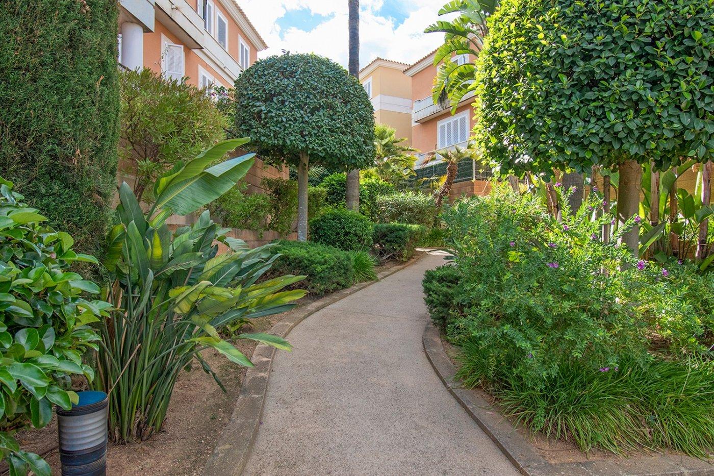 Planta baja de 2 habitaciones, terraza, parking, trastero y zonas comunitarias en son moix - imagenInmueble26