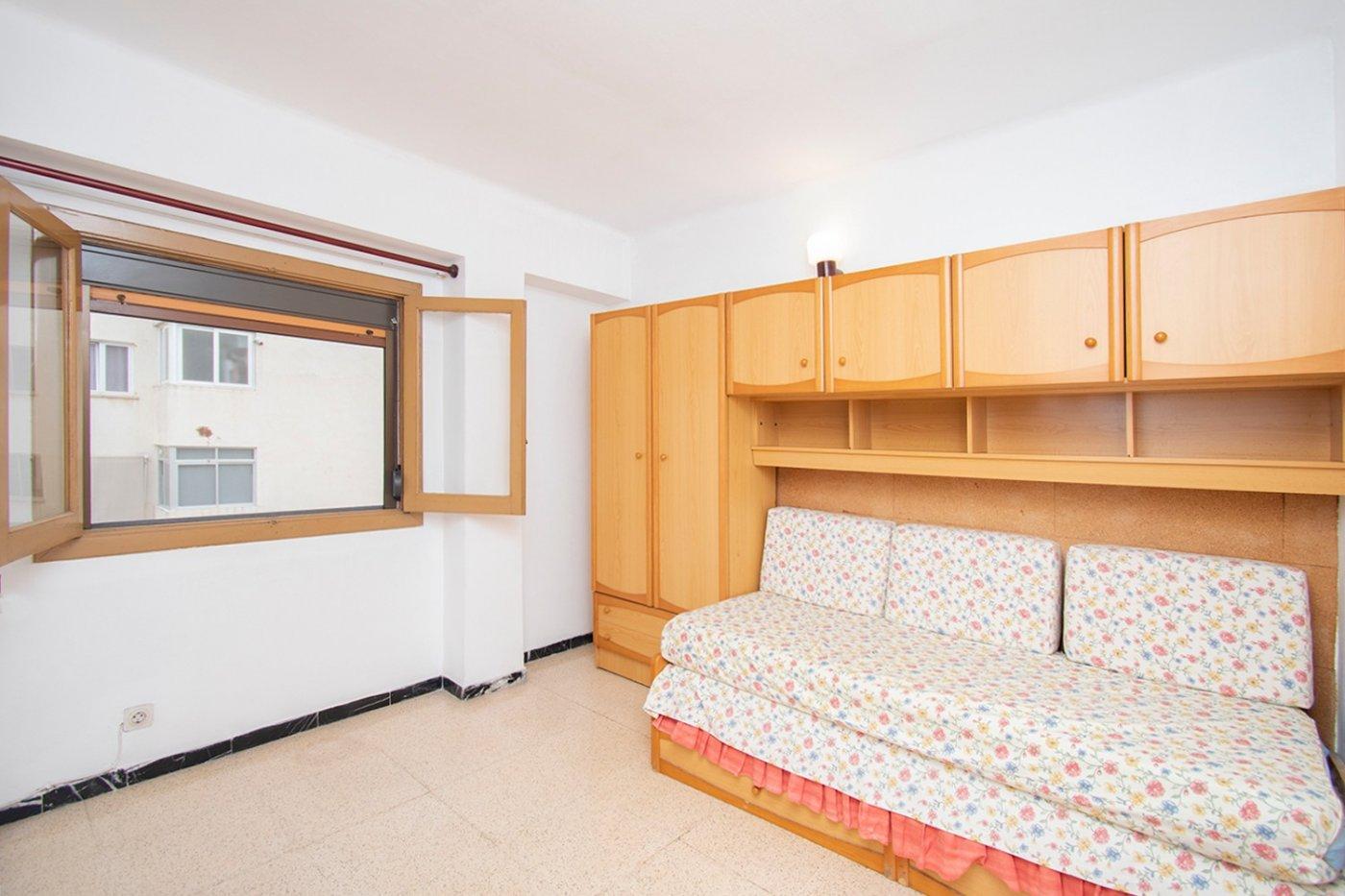 Piso de 3 habitaciones, con trastero en son cotoner. - imagenInmueble6