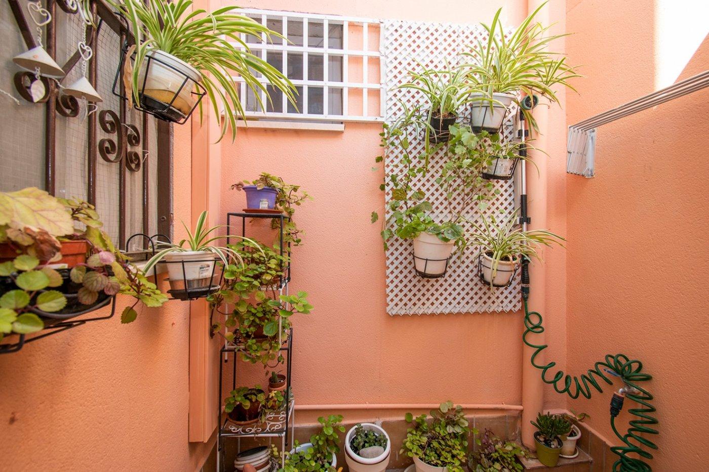 Planta baja de 2 habitaciones, 1 baÑo y patio en son serra-la vileta. - imagenInmueble12