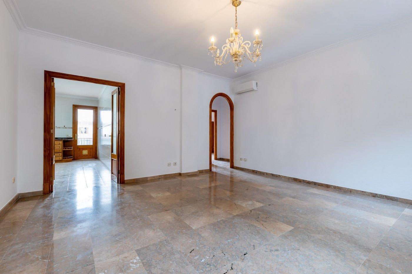 Planta baja y sala adicional de 95 m² con patio de 160 m² - imagenInmueble2