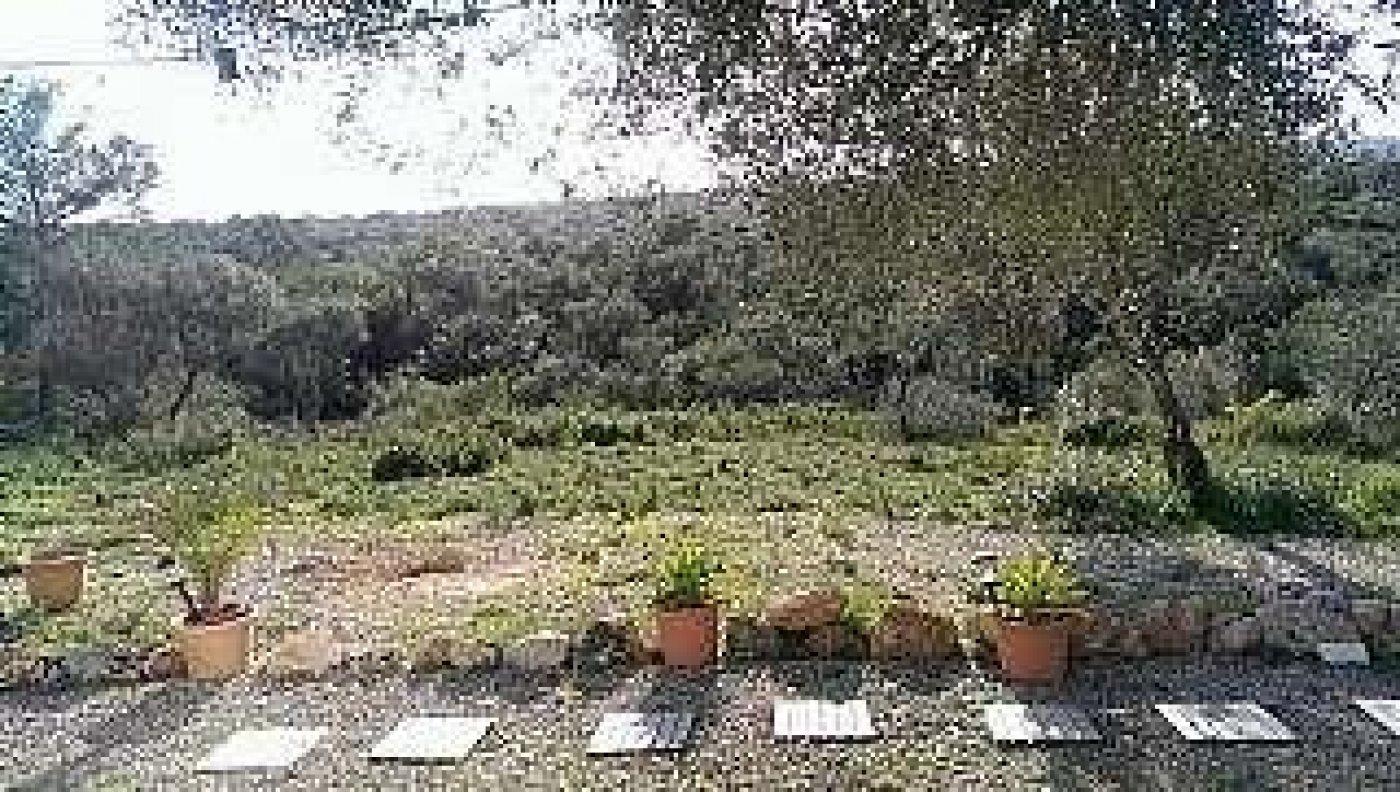 solar en palma-de-mallorca · puntiro 189000€