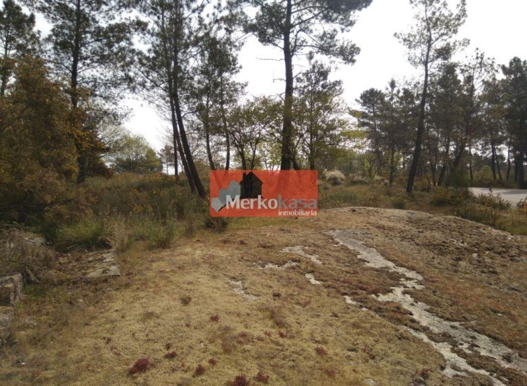 Parcela rústica en venta en Lugo