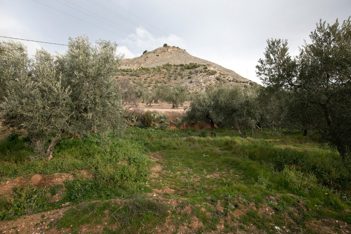 Gran oportunidad de inversión parcela rústica, Granada