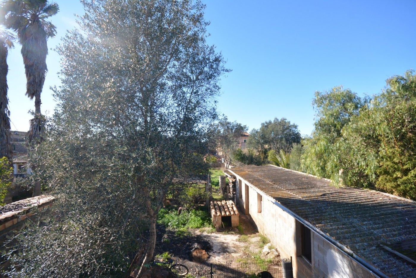 Casa techo libre con terreno de 385m2, zona santa maría - imagenInmueble3