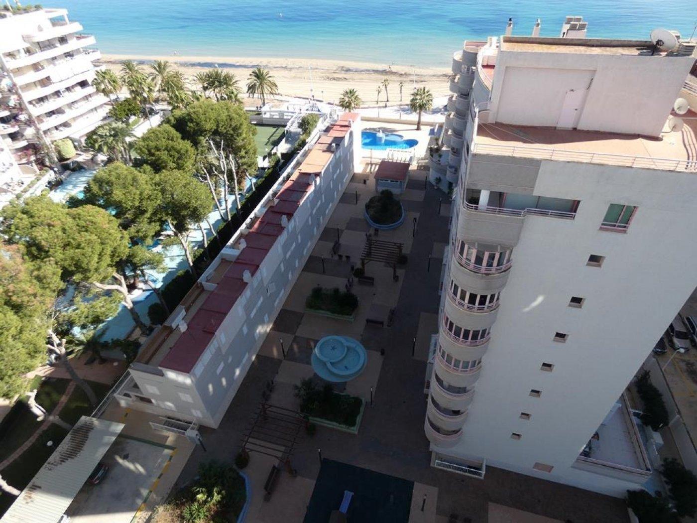 Apartment in Calpe Playa De La Fossa