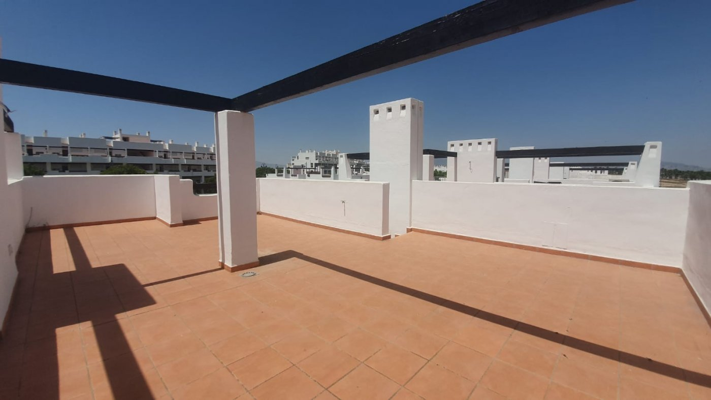 Gallery Image 19 of YES ITS TRUE - BRAND NEW 2 BED APARTMENTS WITH ROOF TERRACE