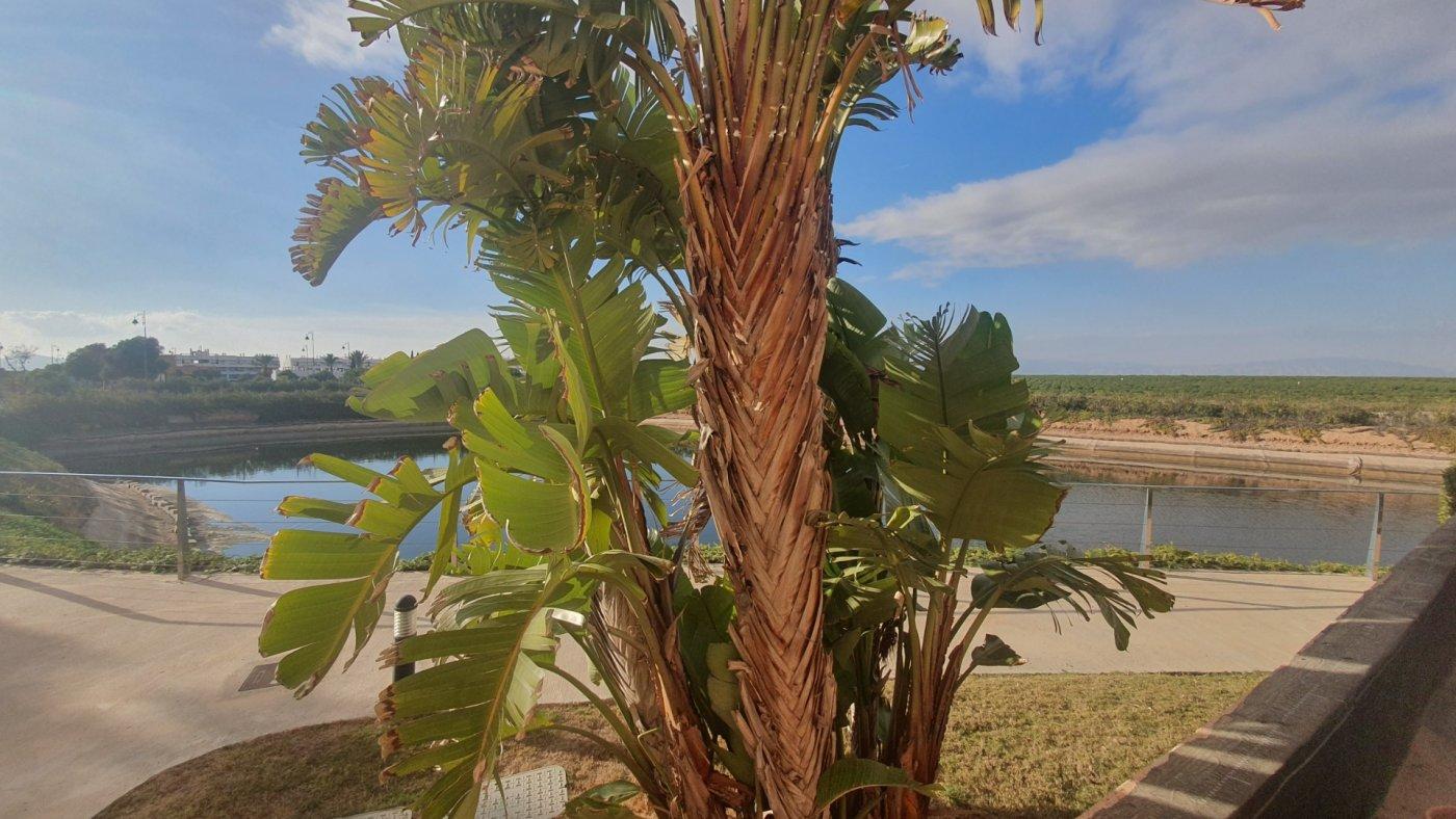 Gallery Image 31 of Apartment For rent in Condado De Alhama, Alhama De Murcia With Pool
