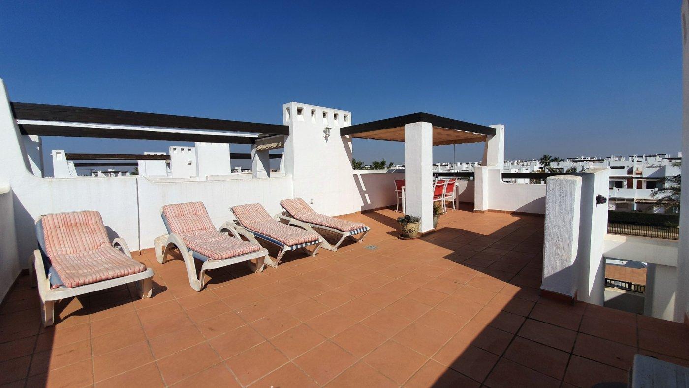 Gallery Image 21 of Apartamento de 2 dormitorios con terraza en la azotea, con vista a la piscina y cerca de todo