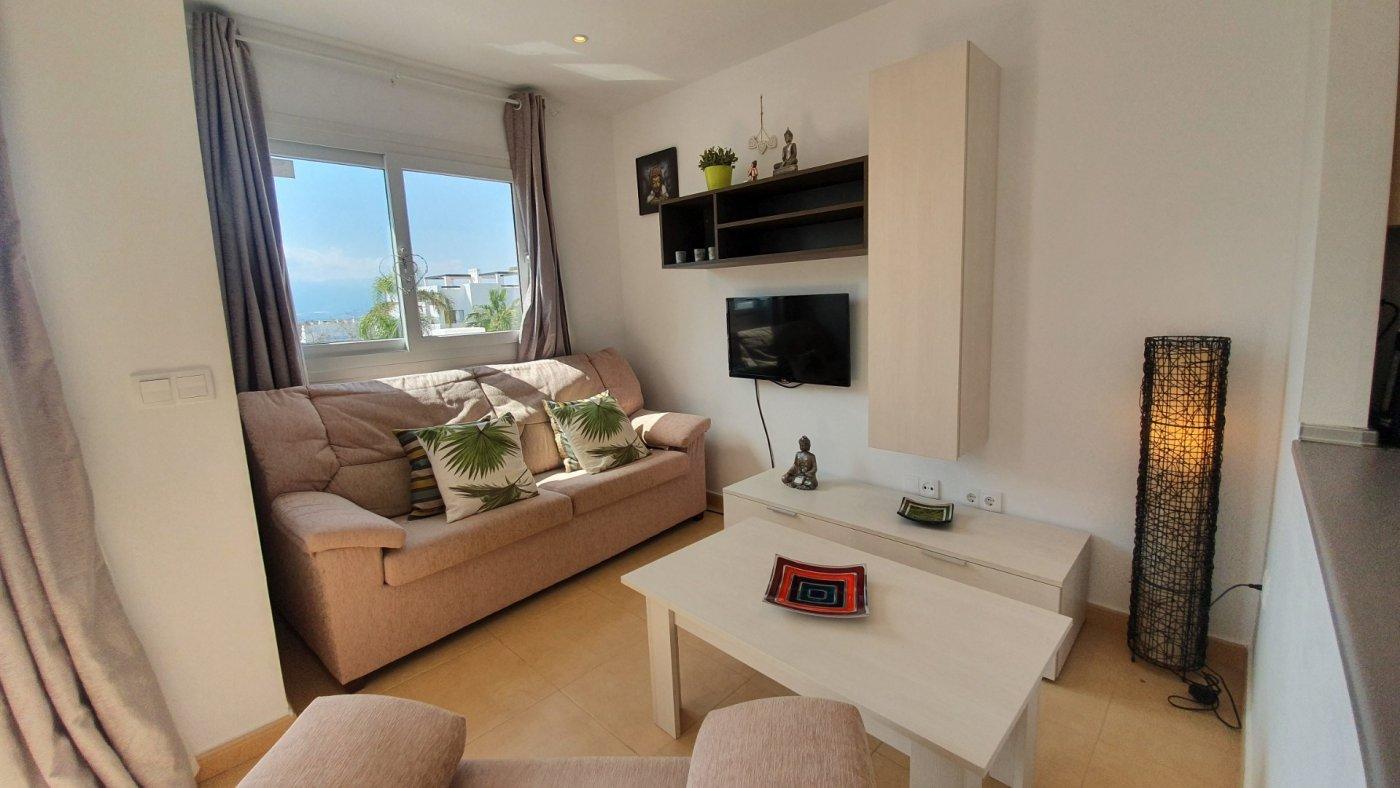 Gallery Image 16 of Espectacular atico de 2 dormitorios con terraza y gran solarium y piscina comunitaria en Naranjos 6