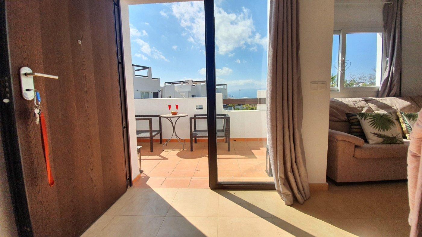 Gallery Image 17 of Espectacular atico de 2 dormitorios con terraza y gran solarium y piscina comunitaria en Naranjos 6