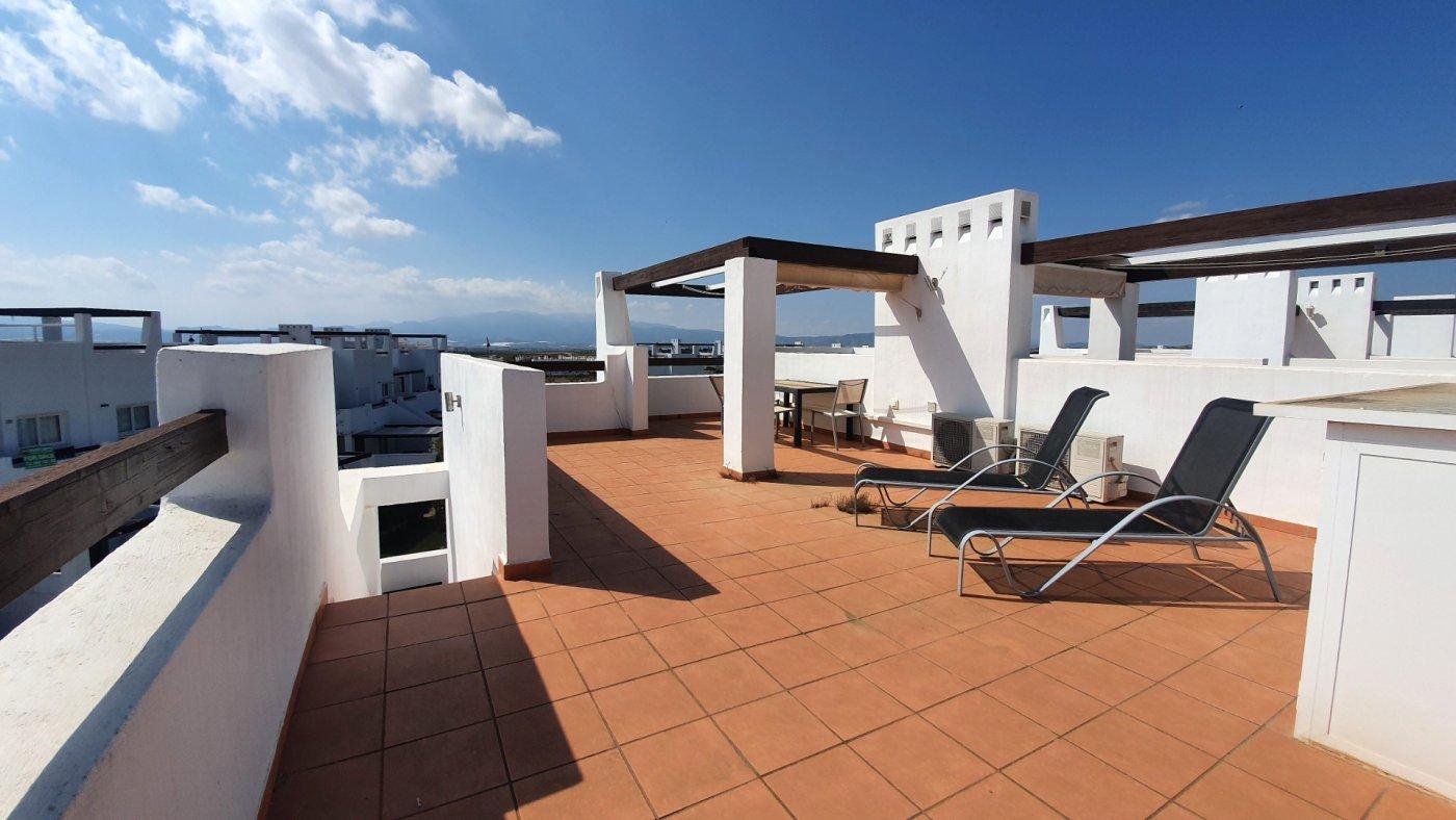 Gallery Image 20 of Espectacular atico de 2 dormitorios con terraza y gran solarium y piscina comunitaria en Naranjos 6