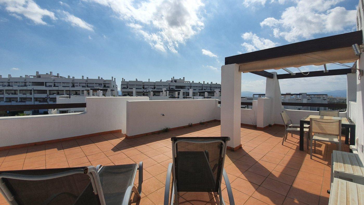 Gallery Image 21 of Espectacular atico de 2 dormitorios con terraza y gran solarium y piscina comunitaria en Naranjos 6