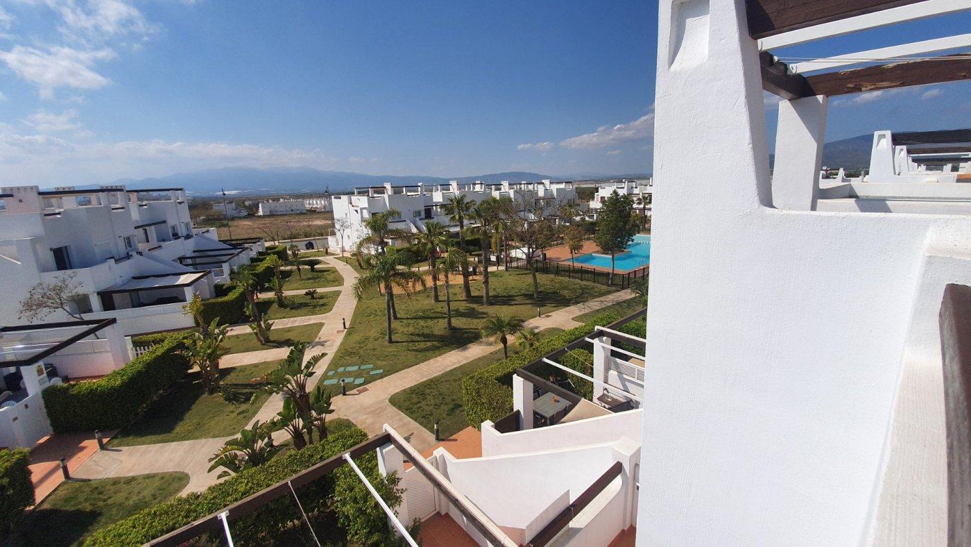 Gallery Image 22 of Espectacular atico de 2 dormitorios con terraza y gran solarium y piscina comunitaria en Naranjos 6