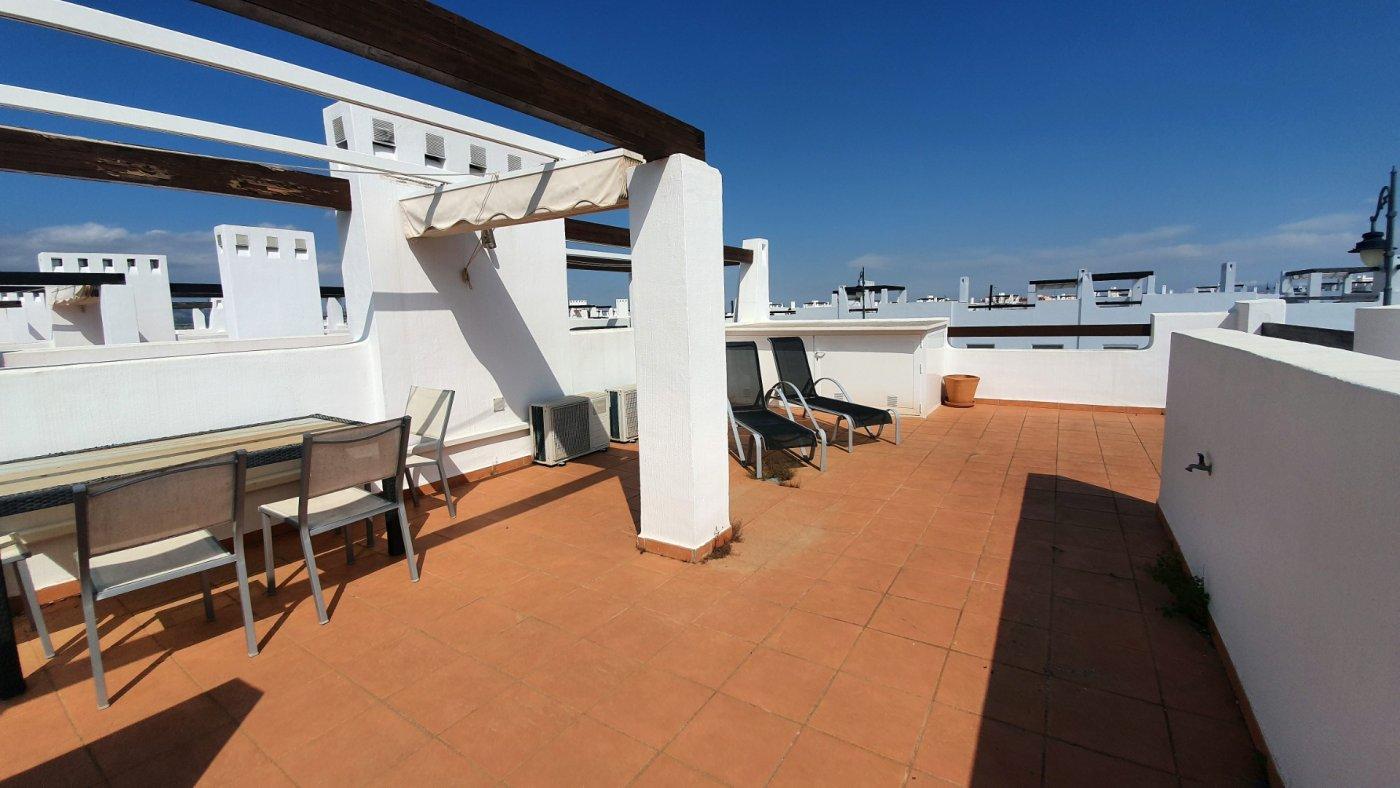 Gallery Image 23 of Espectacular atico de 2 dormitorios con terraza y gran solarium y piscina comunitaria en Naranjos 6