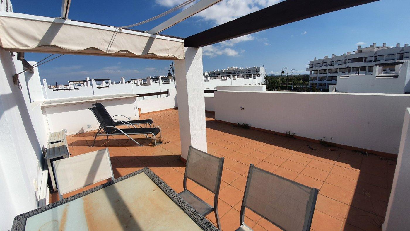 Gallery Image 24 of Espectacular atico de 2 dormitorios con terraza y gran solarium y piscina comunitaria en Naranjos 6