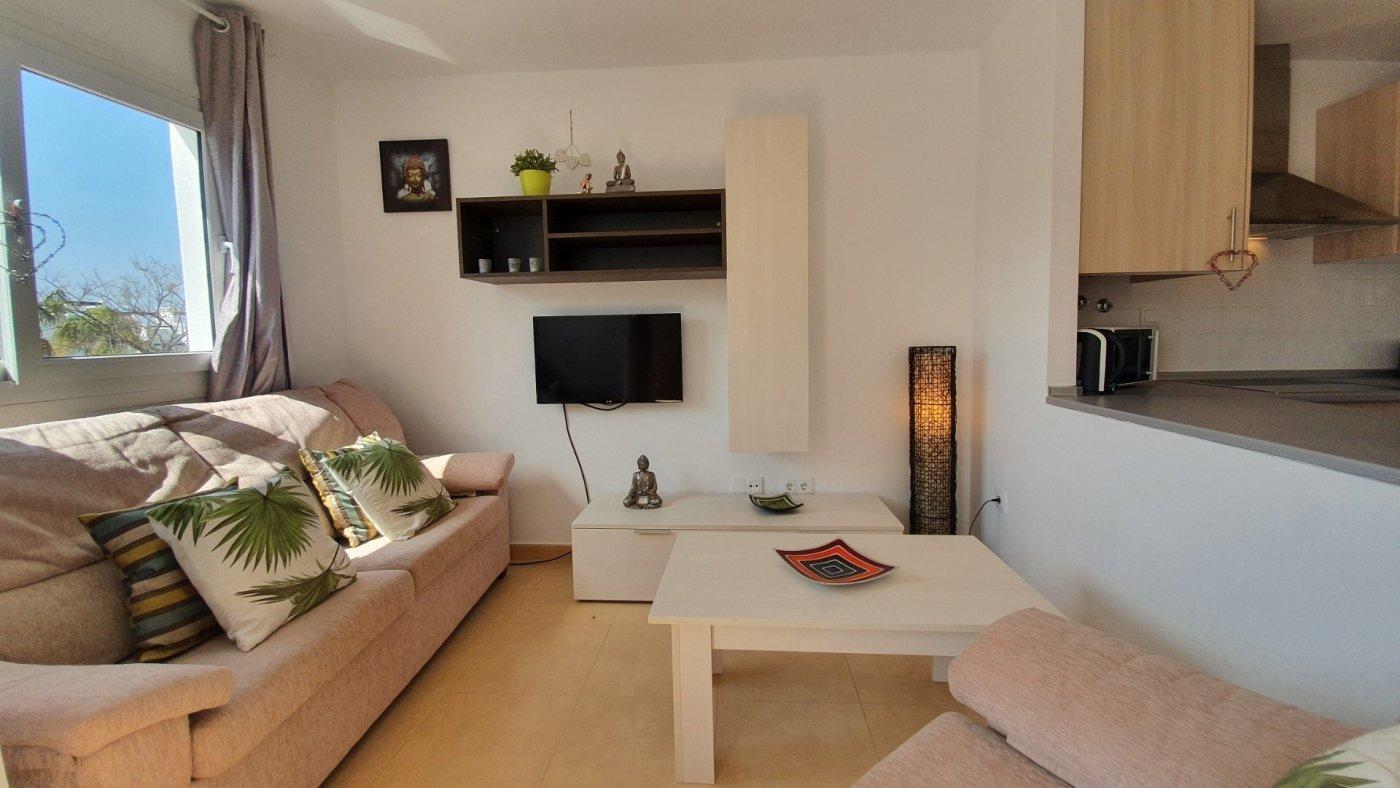Imagen de la galería 8 of Espectacular atico de 2 dormitorios con terraza y gran solarium y piscina comunitaria en Naranjos 6
