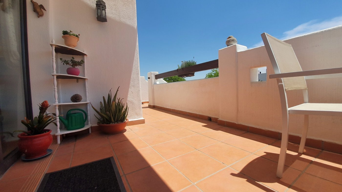 Gallery Image 10 of SOLD!!! South Facing 2 Bed Apartment, Corner Plot, with Roof Terrace and Centrally Located in Naranjos 3