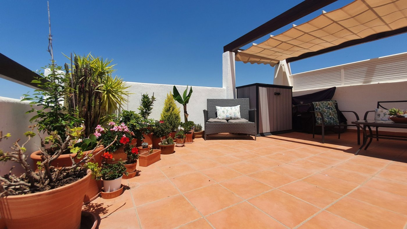 Gallery Image 15 of SOLD!!! South Facing 2 Bed Apartment, Corner Plot, with Roof Terrace and Centrally Located in Naranjos 3