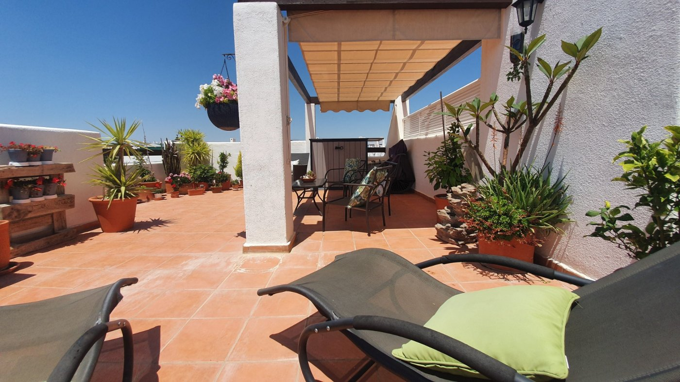 Gallery Image 24 of SOLD!!! South Facing 2 Bed Apartment, Corner Plot, with Roof Terrace and Centrally Located in Naranjos 3