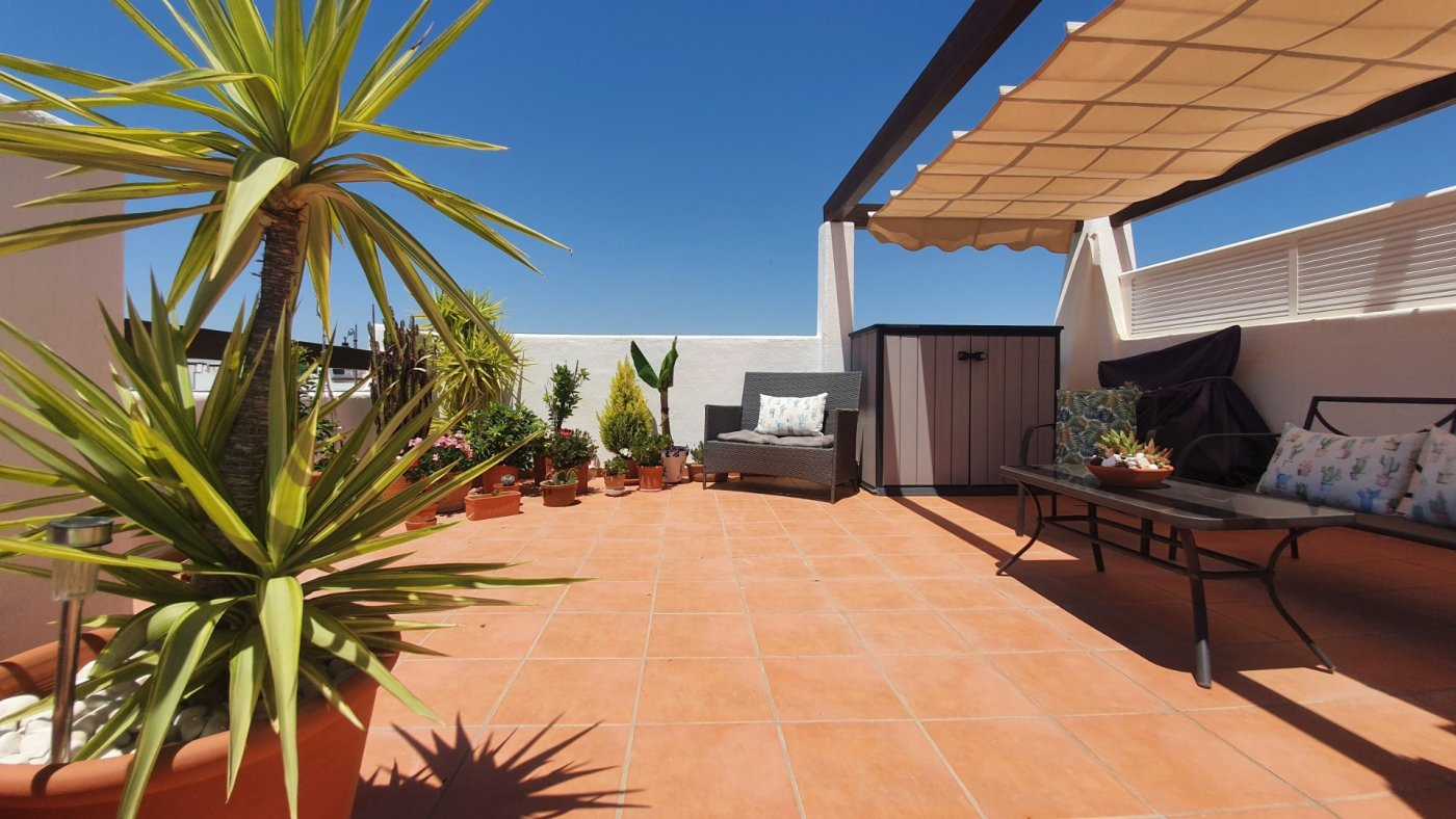 Gallery Image 30 of SOLD!!! South Facing 2 Bed Apartment, Corner Plot, with Roof Terrace and Centrally Located in Naranjos 3