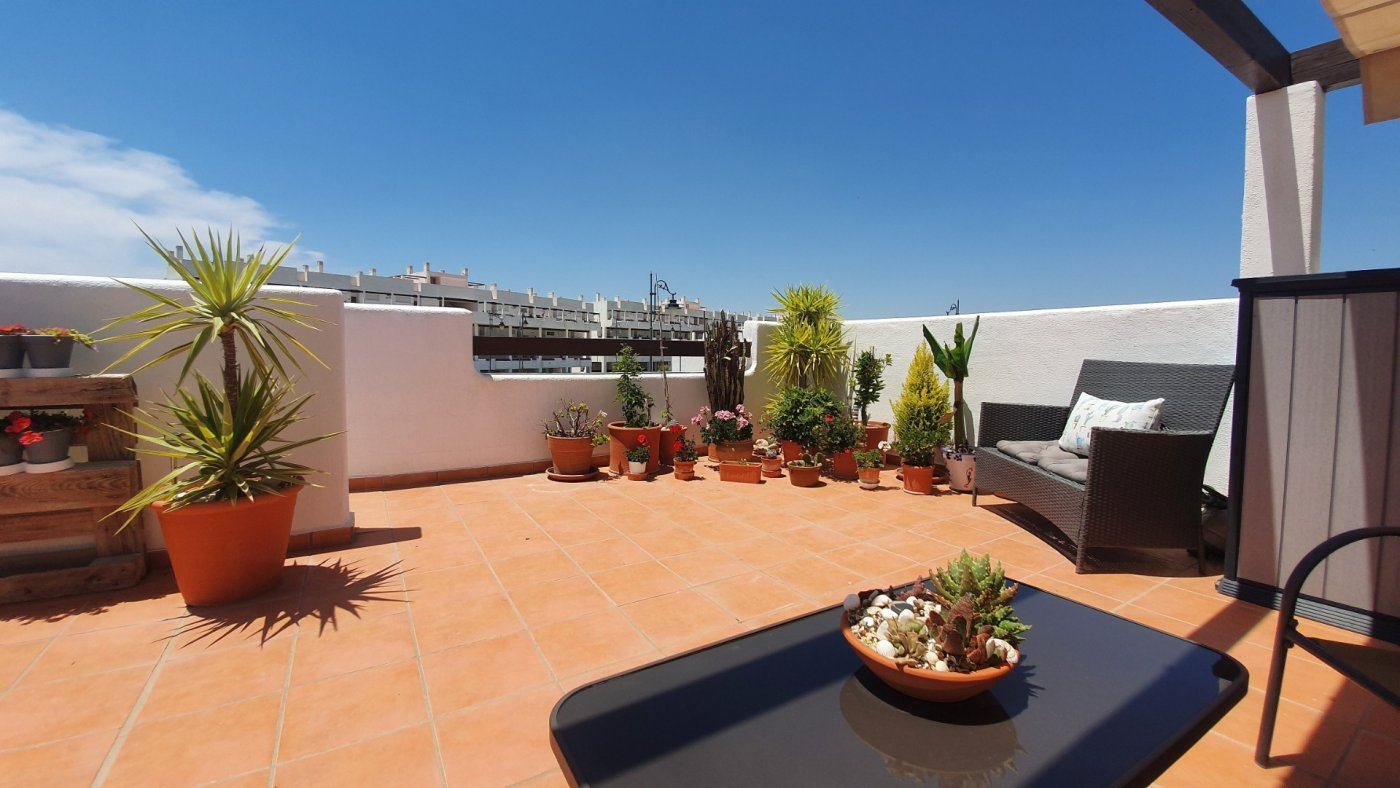 Gallery Image 36 of SOLD!!! South Facing 2 Bed Apartment, Corner Plot, with Roof Terrace and Centrally Located in Naranjos 3