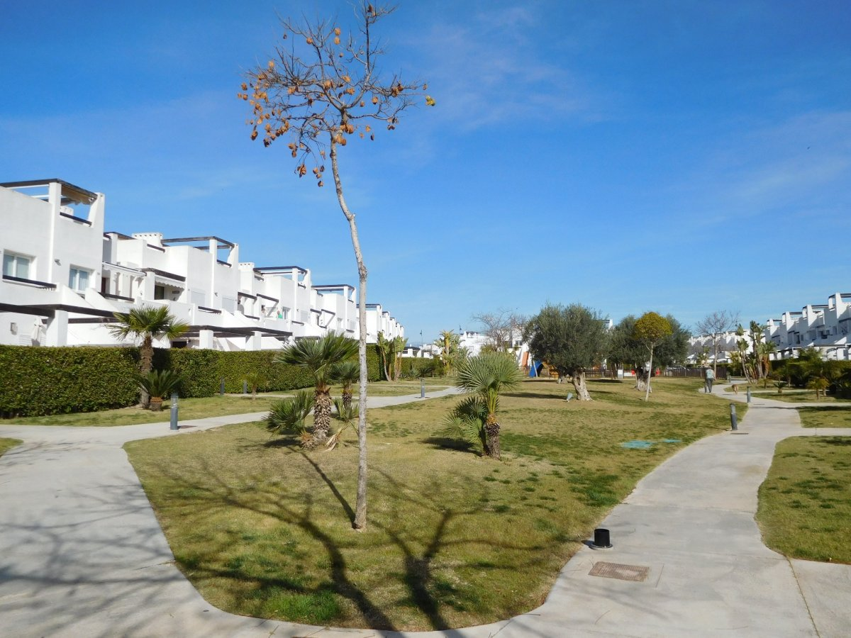 Gallery Image 39 of 2 bedroom corner apartment with ample private roof terrace, on Naranjos 2