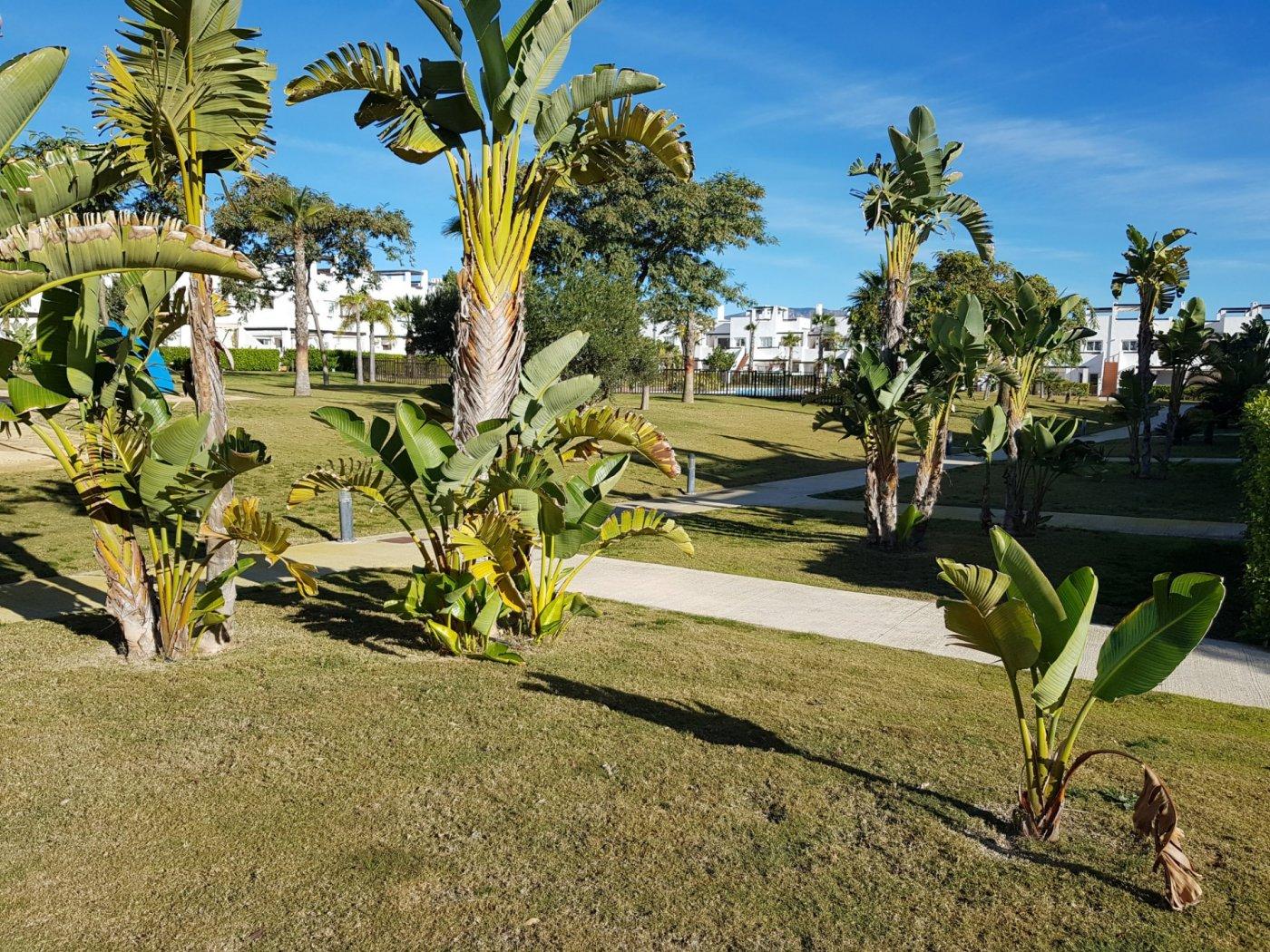Gallery Image 30 of Planta Baja de 3 Dormitorios en los Naranjos 4 con orientacion este oeste, Condado de Alhama