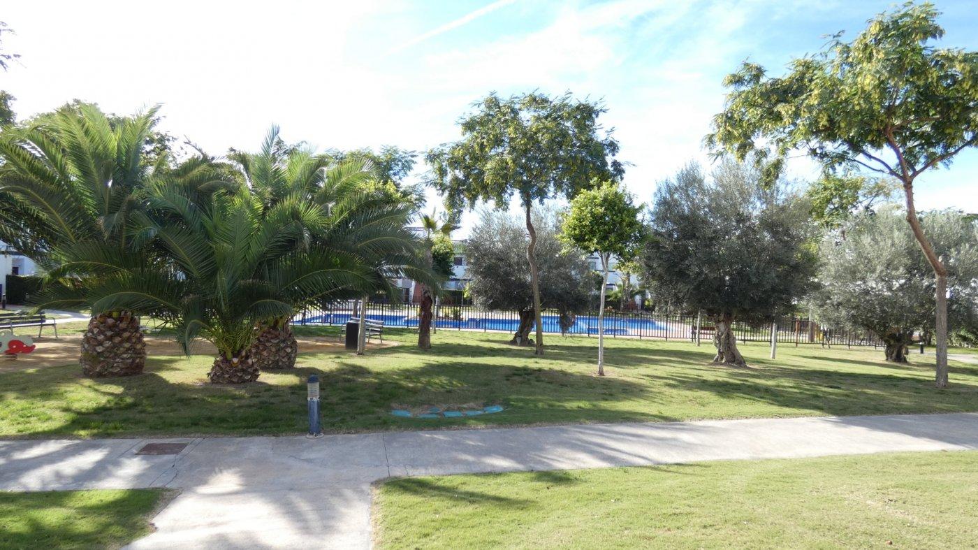 Gallery Image 20 of Apartment For rent in Condado De Alhama, Alhama De Murcia With Pool