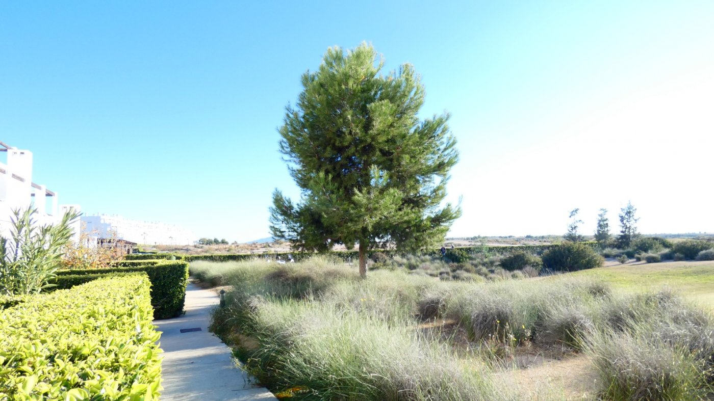 Gallery Image 24 of NEW ON THE MARKET! Front line golf ground floor apartment at Condado de Alhama for sale