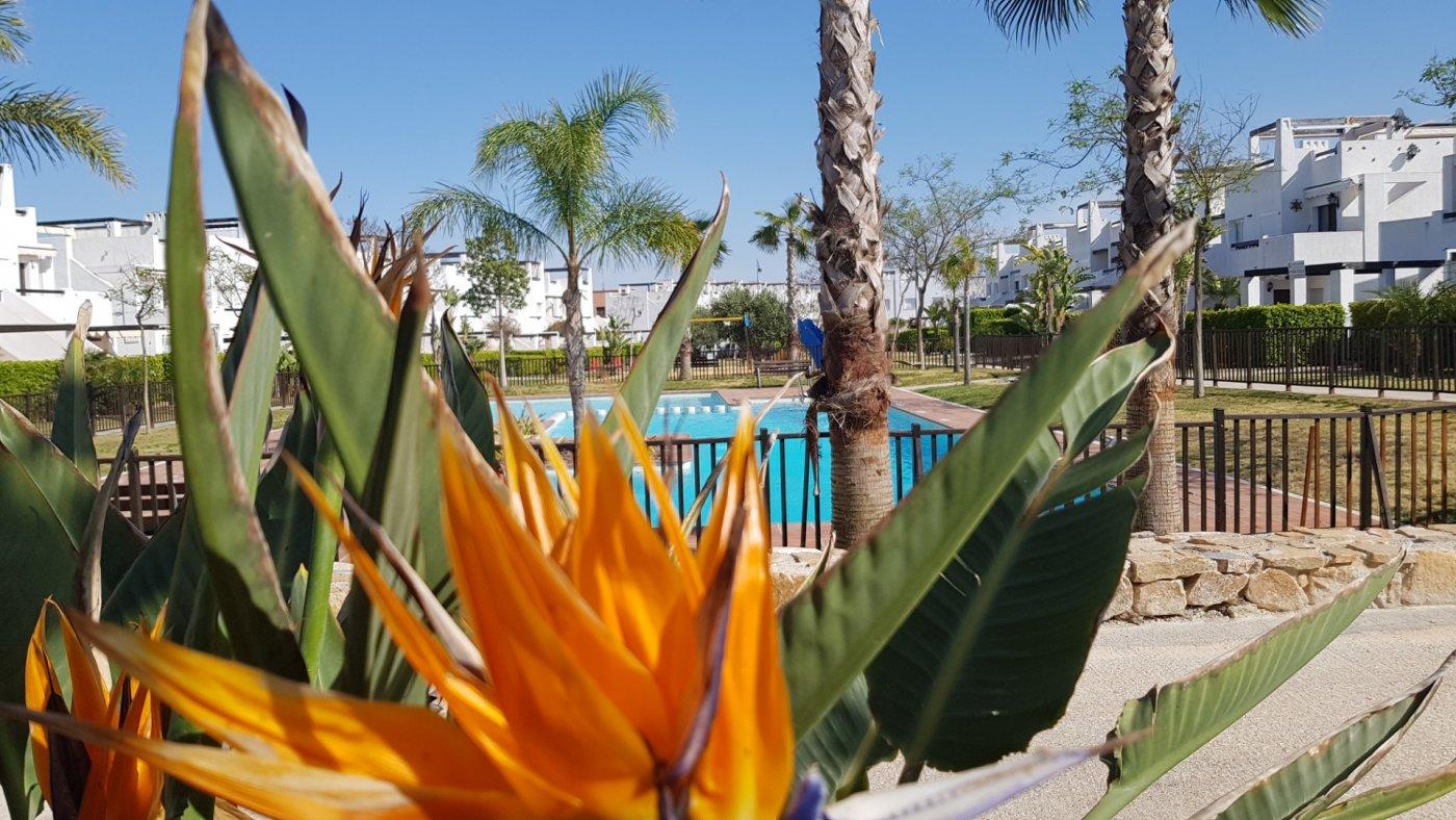 Gallery Image 29 of Key-Ready South West Facing Ground Floor 3 Bedroom Apartment in Naranjos 2, Condado de Alhama