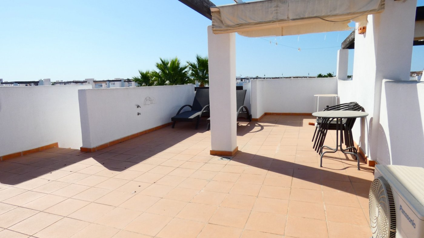 Gallery Image 15 of Pool at your Doorstep, Private Roof Top Solarium, Buckets Full of Sunshine and Gorgeous Views