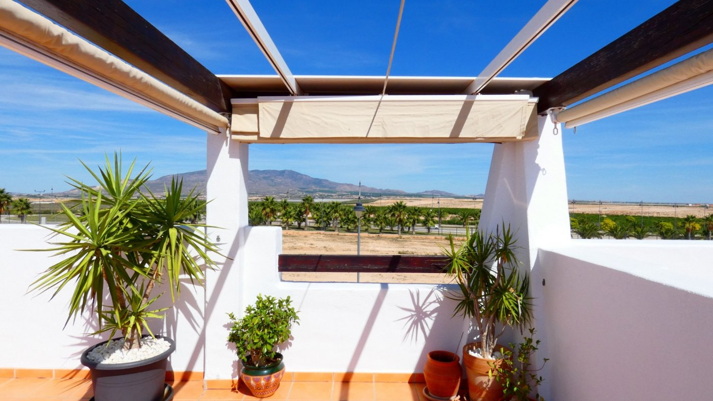 Gallery Image 16 of Location, location, location! South West Facing 2 Bed Apartment in Naranjos 4