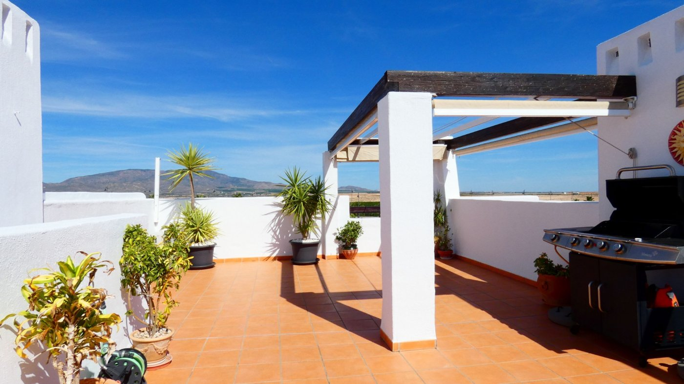 Gallery Image 2 of Location, location, location! South West Facing 2 Bed Apartment in Naranjos 4
