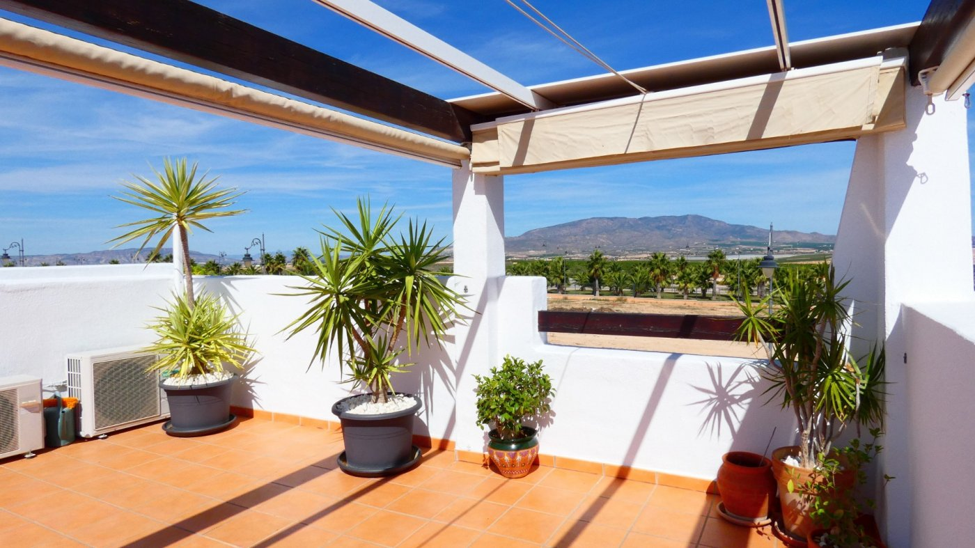 Gallery Image 37 of Location, location, location! South West Facing 2 Bed Apartment in Naranjos 4