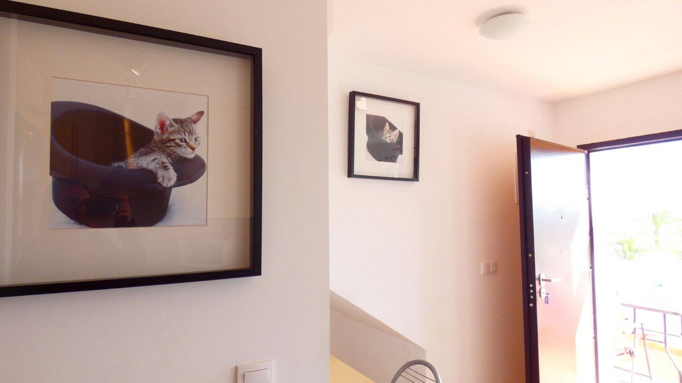 Imagen 3 Apartamento ref 3216 para sale en Condado De Alhama España - Quality Homes Costa Cálida