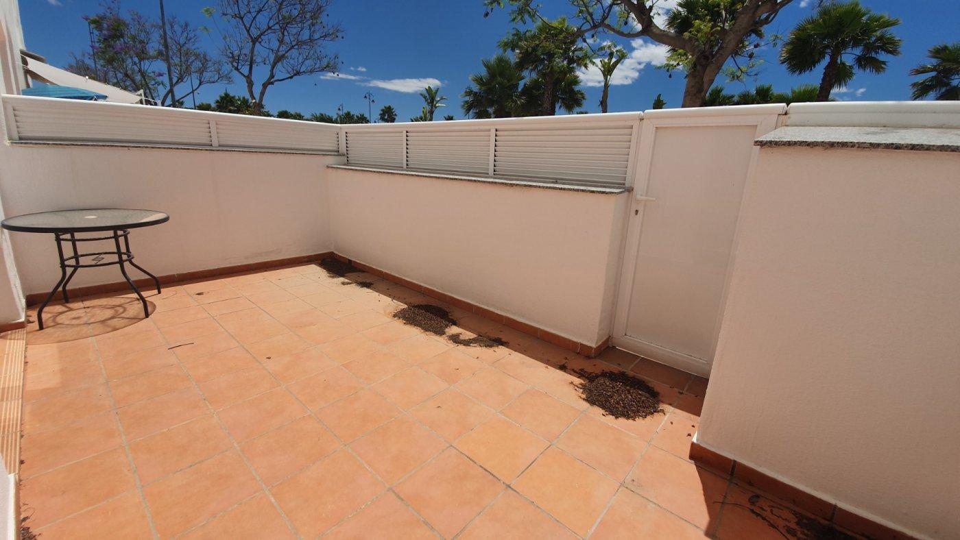 Gallery Image 13 of Bajo de 3 Dormitorios en Jardin 13 a pocos pasos de la Piscina Comunitaria en Condado de Alhama