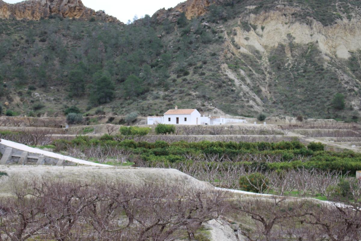 Casas - 02794
