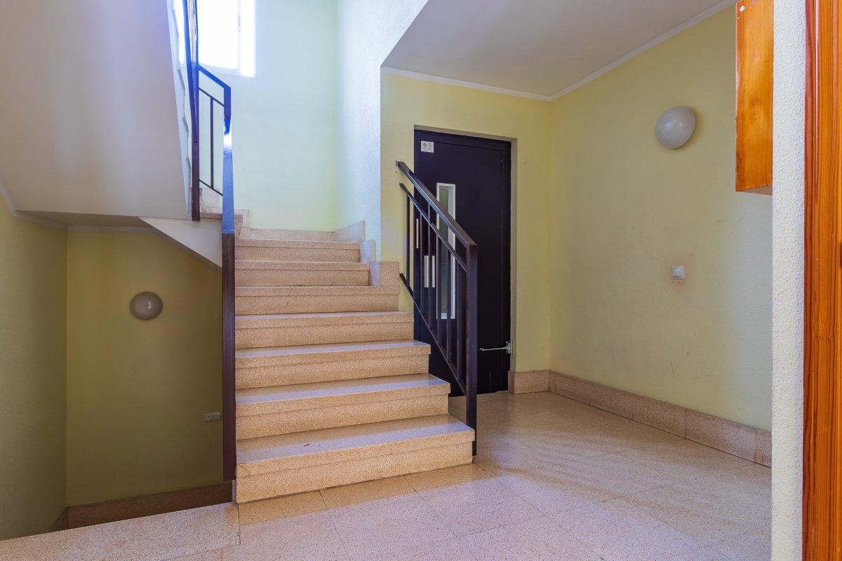 Excelente vivienda perfectamente reformada y con garaje en son dameto. - imagenInmueble18