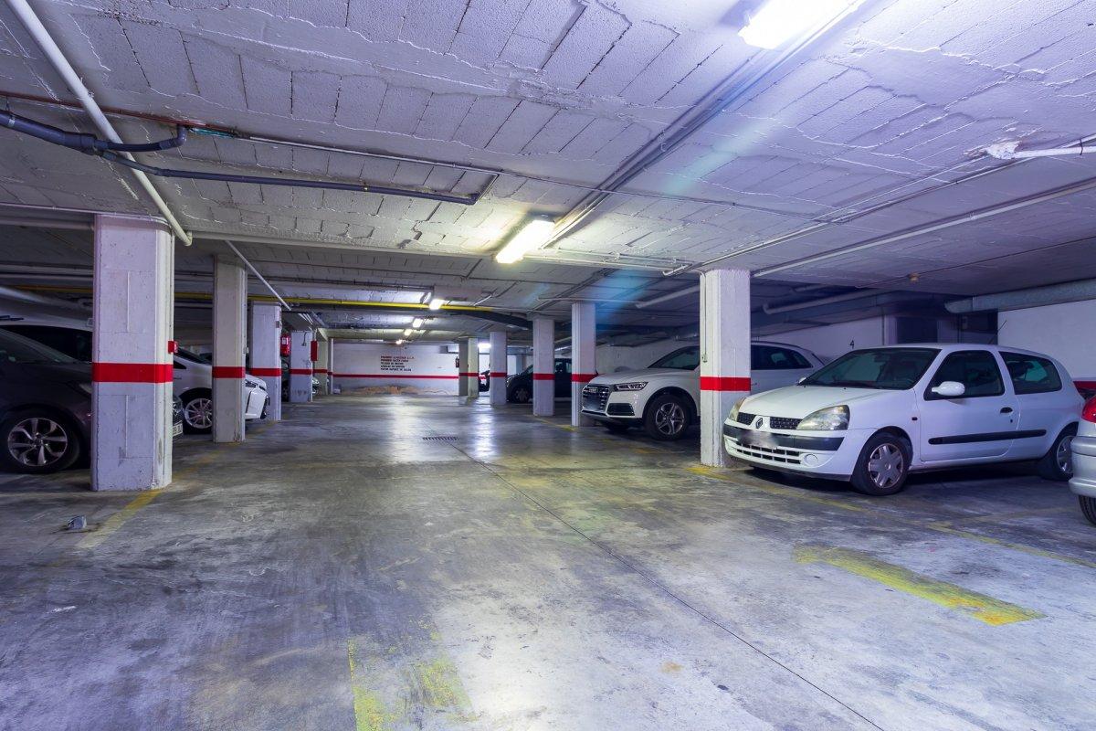 Excelente vivienda perfectamente reformada y con garaje en son dameto. - imagenInmueble20